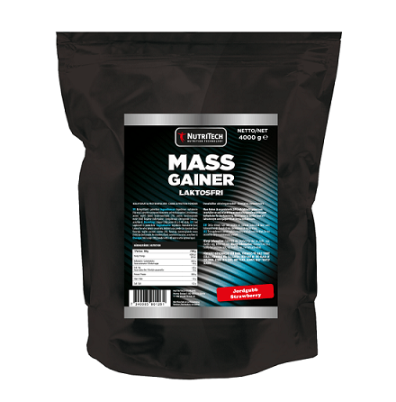 Nutritech Mass Gainer